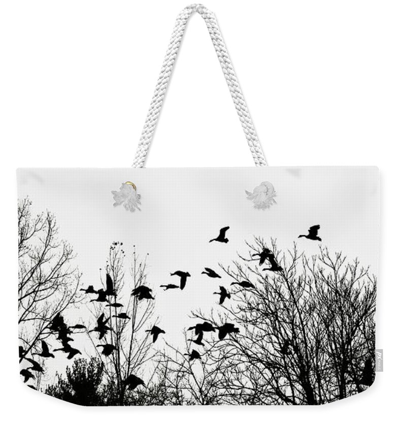Canada Geese Weekender Tote Bag featuring the photograph Canada Geese Flight Silhouette by Regina Geoghan