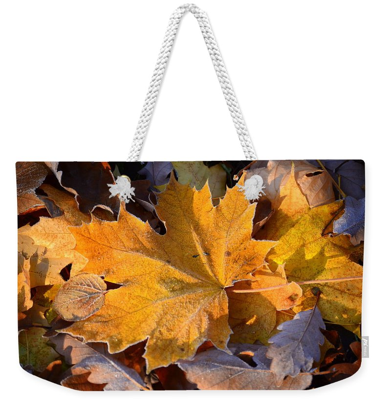 Leaf Weekender Tote Bag featuring the photograph Canada In My Mind by Riad Belhimer