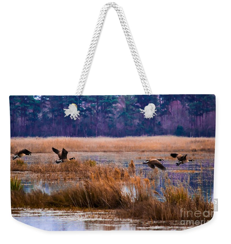 Canada Weekender Tote Bag featuring the photograph Canadian Flight 4 by Scott Hervieux