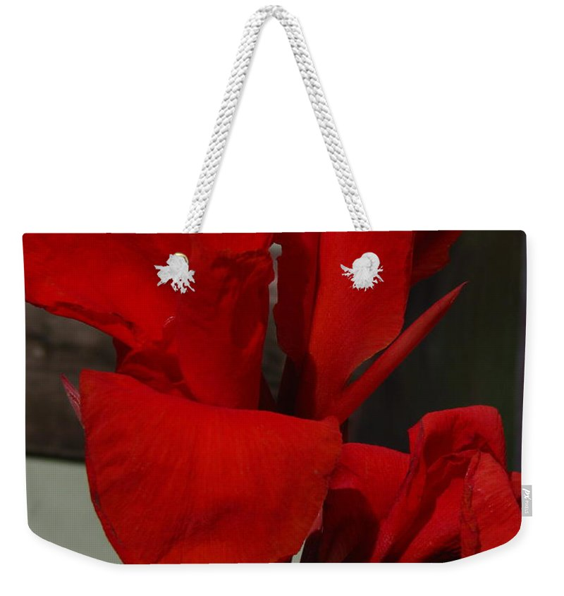Patzer Weekender Tote Bag featuring the photograph Canna by Greg Patzer
