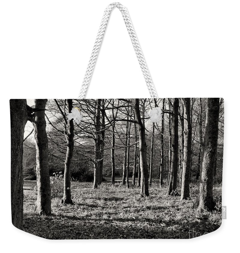 Rivington Weekender Tote Bag featuring the photograph Can't See The Wood For The Trees by Gillian Singleton