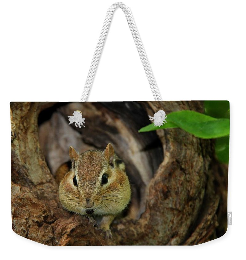Animal Weekender Tote Bag featuring the photograph Cant Talk With My Mouth Full by Davandra Cribbie