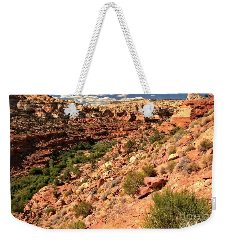 Calf Creek Falls Weekender Tote Bag featuring the photograph Canyon At Calf Creek by Adam Jewell