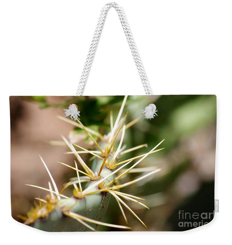 Arizona Weekender Tote Bag featuring the photograph Canyon Cactus by Kara Duffus