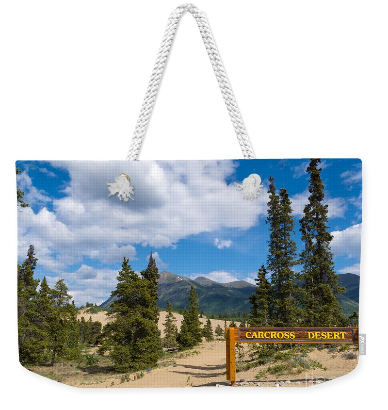 Alpine Weekender Tote Bag featuring the photograph Carcross Desert Sand Dunes Yukon Territory Canada by Stephan Pietzko