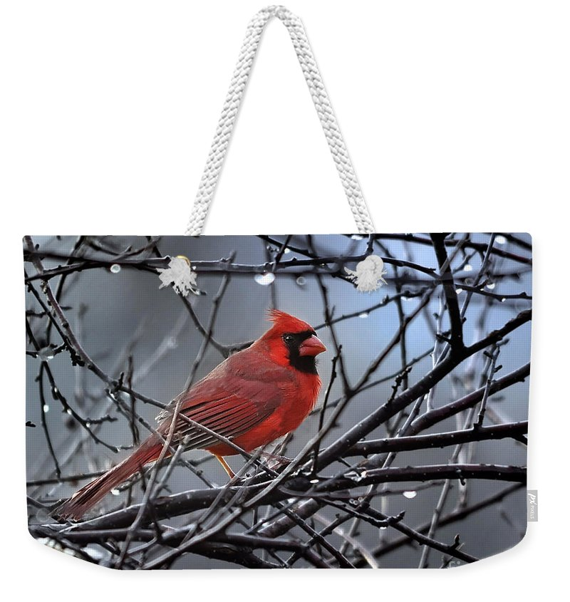(first Place Win In 'red' Contest) (featured Art) Nava Jo Thompson Weekender Tote Bag featuring the photograph Cardinal In The Rain  by Nava Thompson
