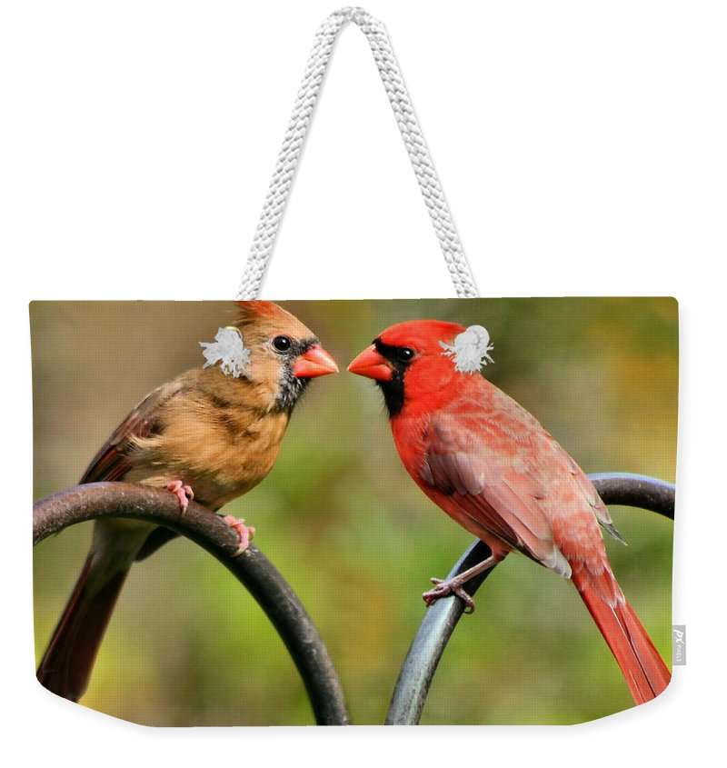 Cardinalis Weekender Tote Bag featuring the photograph Cardinal Love by Kristin Elmquist