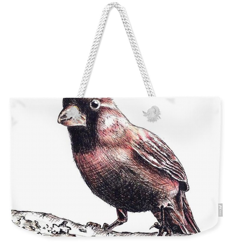 Ink Sketch Weekender Tote Bag featuring the drawing Cardinal Male by Katharina Filus