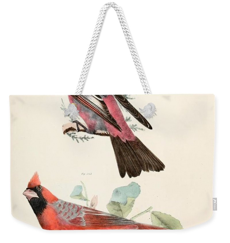 Cardinals Weekender Tote Bag featuring the painting Cardinals by Philip Ralley