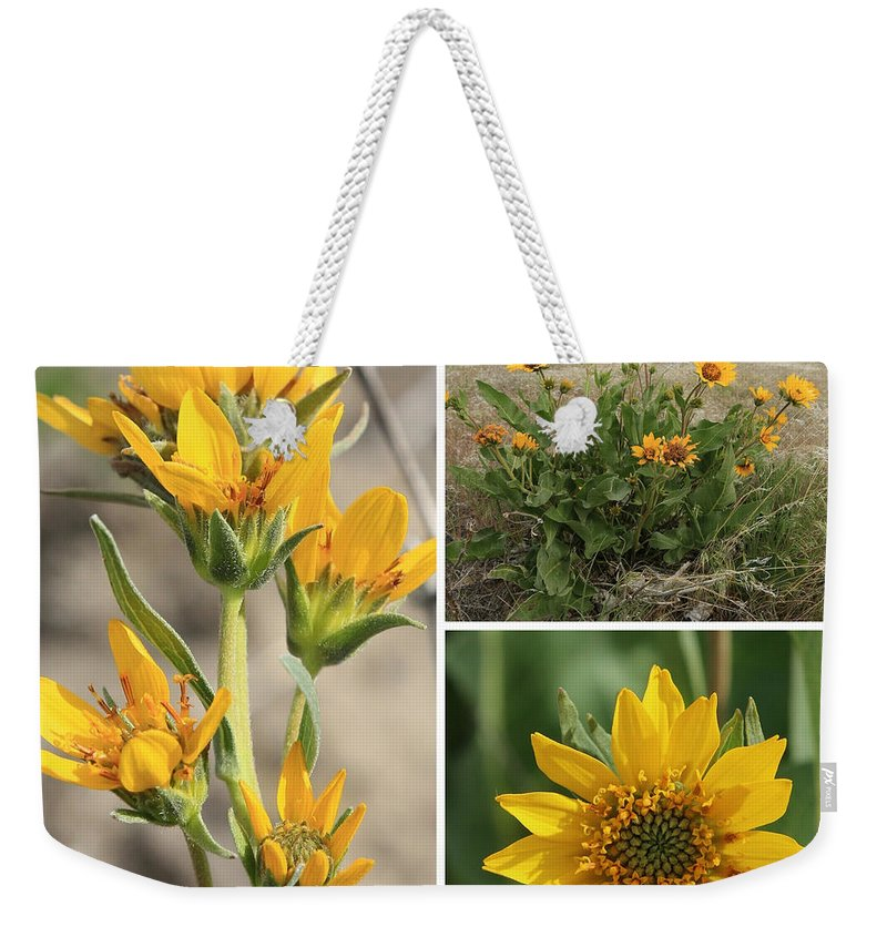 Wildflower Weekender Tote Bag featuring the photograph Carey's Balsamroot Collage by Carol Groenen