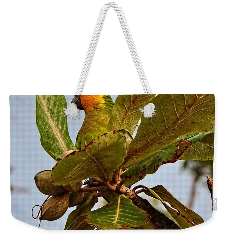Caribbean Weekender Tote Bag featuring the photograph Caribbean Parakeet by Photos By Cassandra