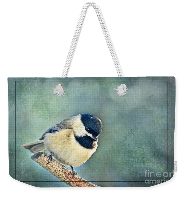 Nature Weekender Tote Bag featuring the photograph Carlina Chickadee With Soft Blue Bokeh by Debbie Portwood