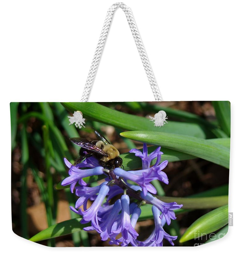 Bee On Hyacinth Flower Weekender Tote Bag featuring the photograph Carpenter On Hyacinth by Kitrina Arbuckle