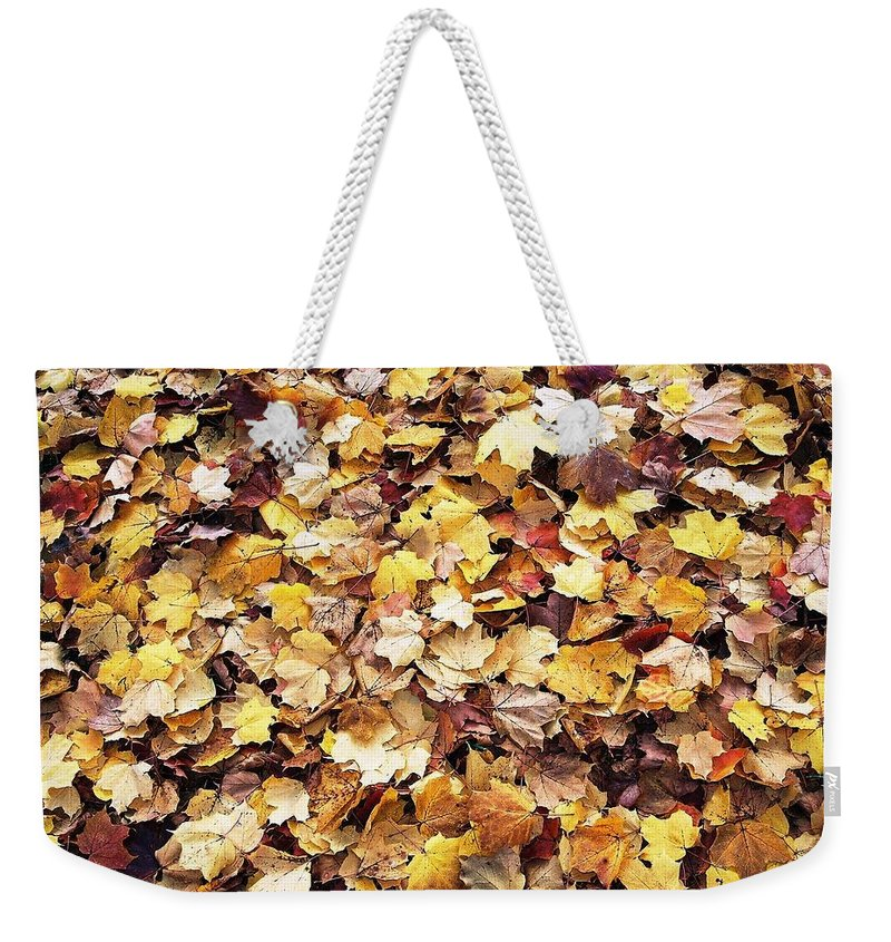 Leafs Weekender Tote Bag featuring the photograph Carpet Of Leafs by Daniel Thompson