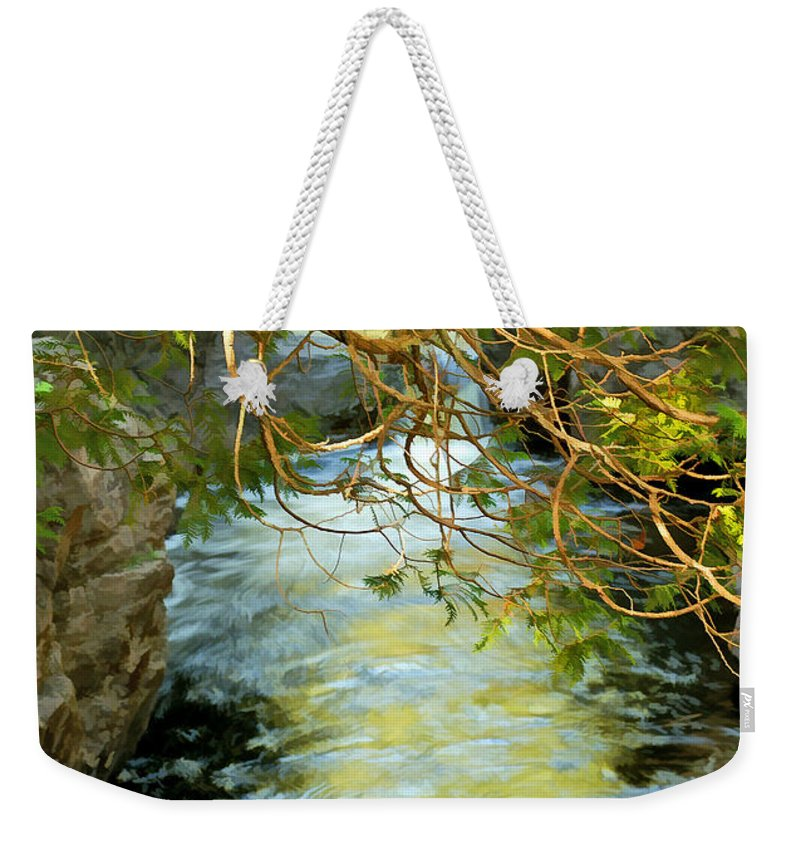 Cascade River Weekender Tote Bag featuring the photograph Cascade Cedar by Bill Morgenstern