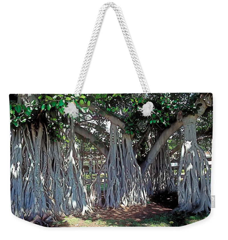 Tranquil Weekender Tote Bag featuring the photograph Cascade by Terry Reynoldson