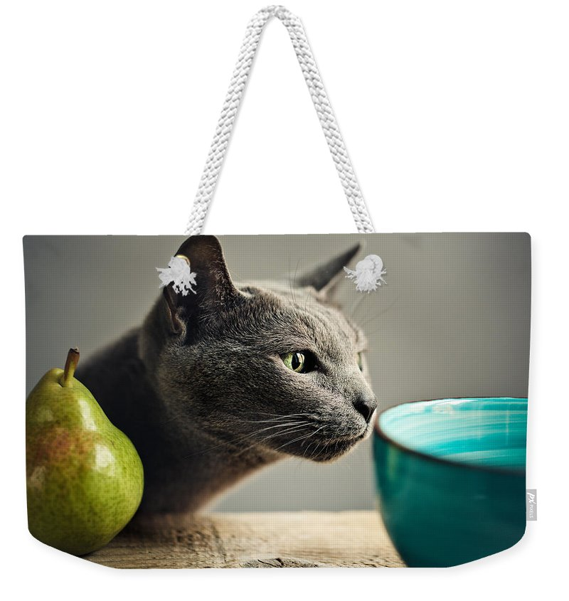 Cat Weekender Tote Bag featuring the photograph Cat and Pears by Nailia Schwarz