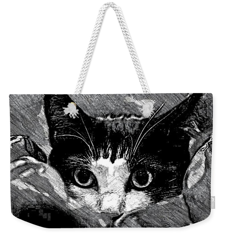 Cat Weekender Tote Bag featuring the drawing Cat In Hiding by Kathleen Odenthal