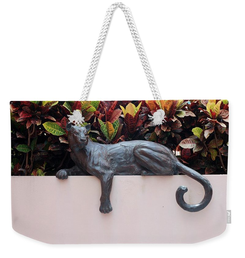 Cat Weekender Tote Bag featuring the photograph CAT by Rob Hans