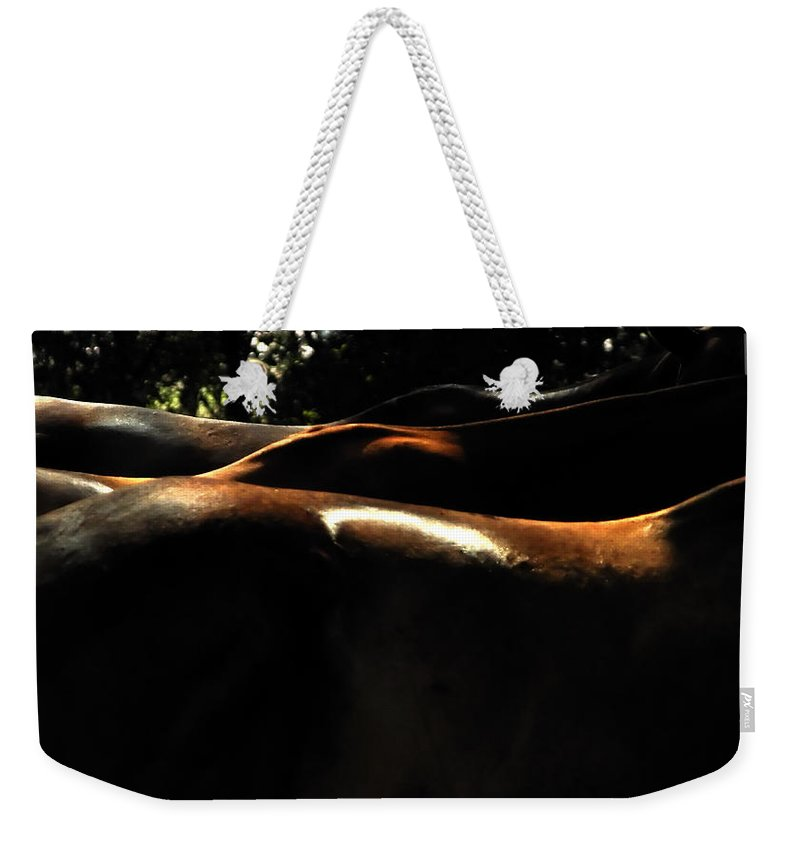 Transportation Weekender Tote Bag featuring the photograph Catching Some Shade 17197 by Jerry Sodorff