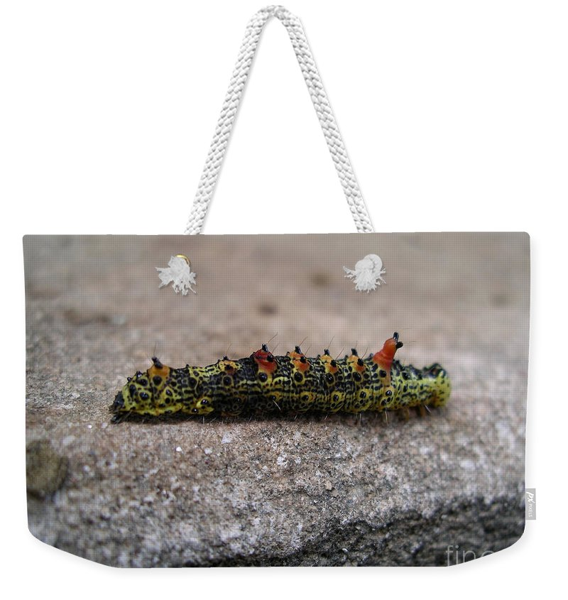 Abadiania Weekender Tote Bag featuring the digital art Caterpillar by Carol Ailles