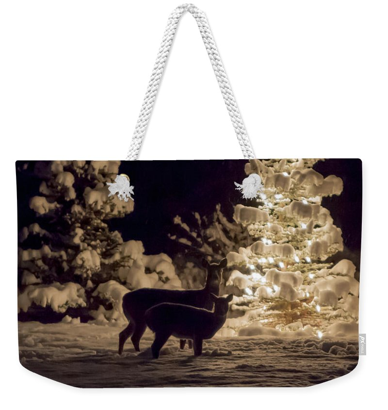 Deer Weekender Tote Bag featuring the photograph Cautious by Aaron Aldrich