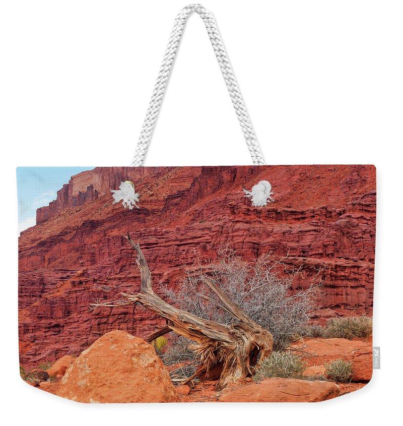 Cedar Tree Weekender Tote Bag featuring the photograph Cedar Wood Tree, Fisher Towers, Moab by Fotomonkee