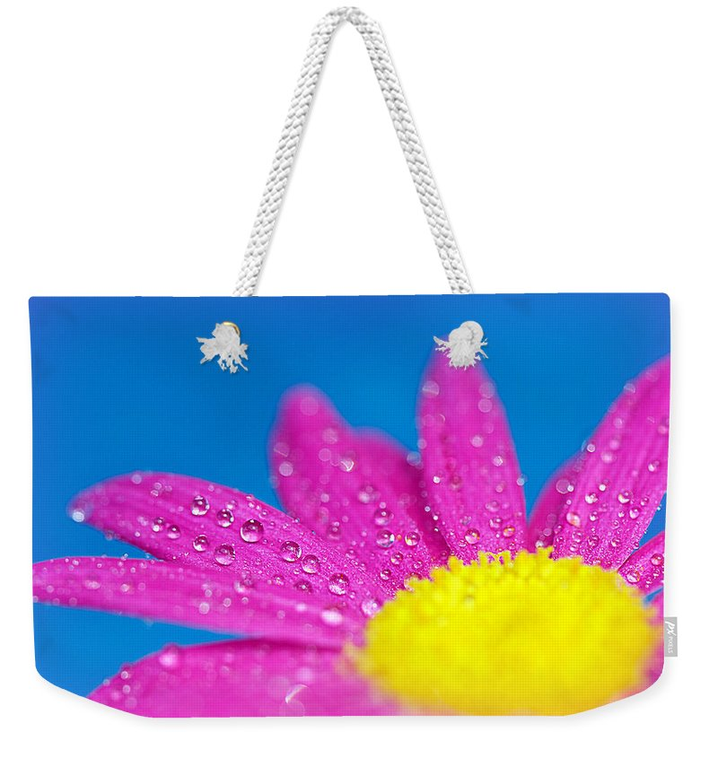 Water Weekender Tote Bag featuring the photograph Celebration A Cacophony Of Colour by Lisa Knechtel