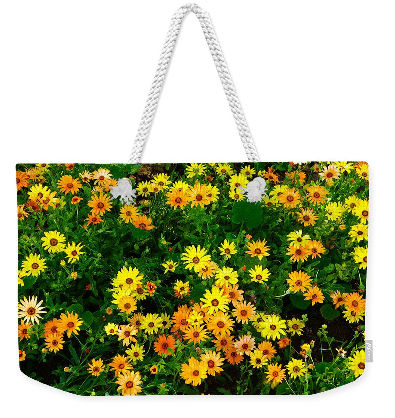 Celebration Weekender Tote Bag featuring the photograph Celebration Of Yellows And Oranges Study 3 by Robert Meyers-Lussier