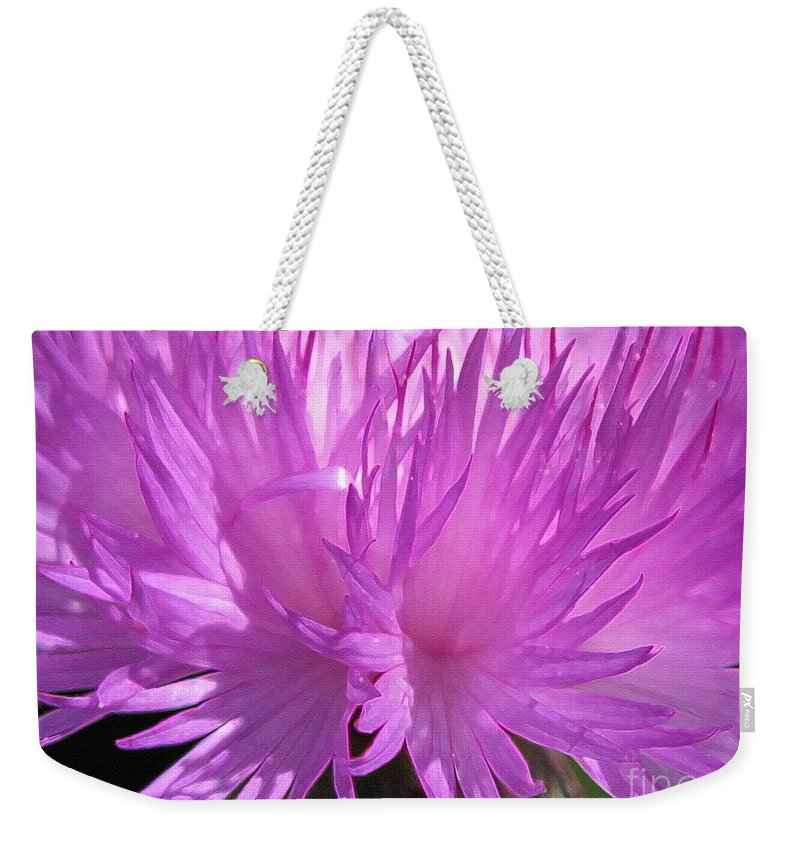 Centaurea Weekender Tote Bag featuring the painting Centaurea From The Sweet Sultan Mix by J McCombie