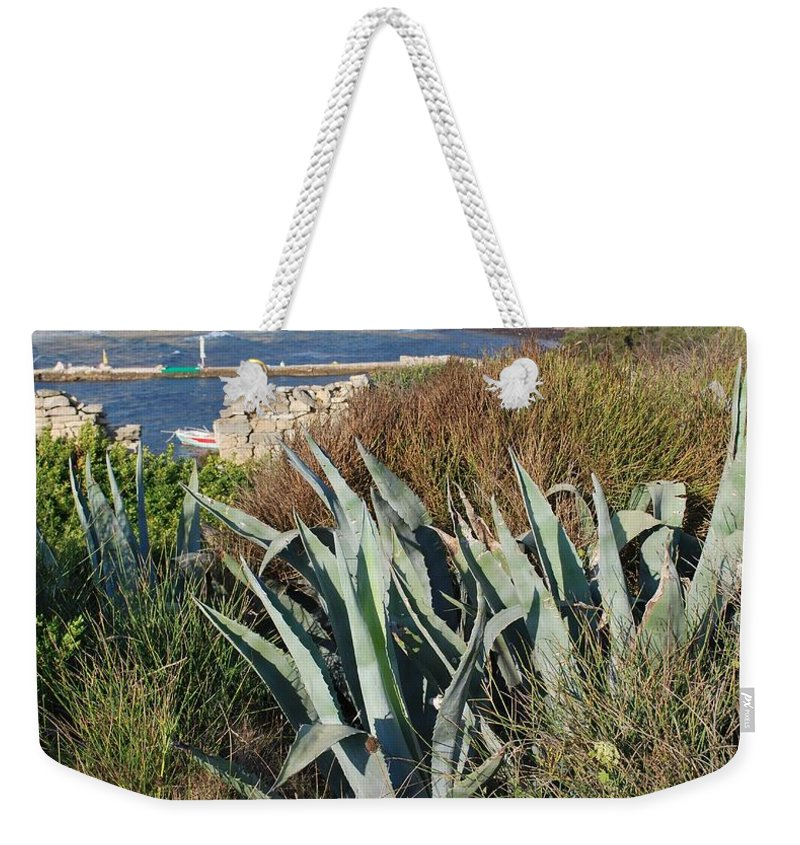 Century Plant Weekender Tote Bag featuring the photograph Century Plant 1 by George Katechis
