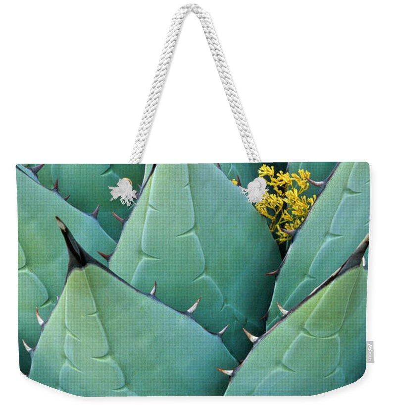 Green Leaf Weekender Tote Bags