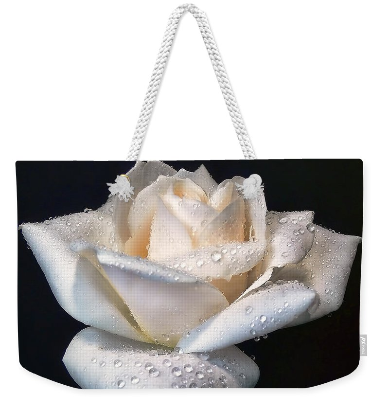 Rose Weekender Tote Bag featuring the photograph Champagne Rose Flower Macro by Jennie Marie Schell