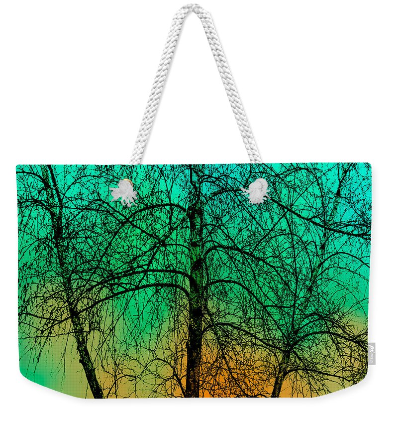 Tree Weekender Tote Bag featuring the photograph Change Of Seasons Number Tw0 by Bob Orsillo