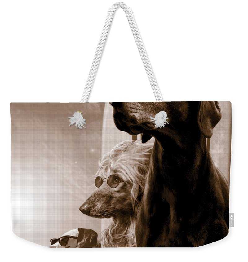 Animal Weekender Tote Bag featuring the photograph Changes by MGL Meiklejohn Graphics Licensing