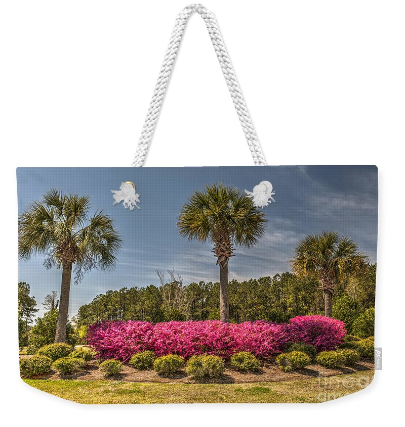 Palmetto Weekender Tote Bag featuring the photograph Charleston In The Spring by Dale Powell