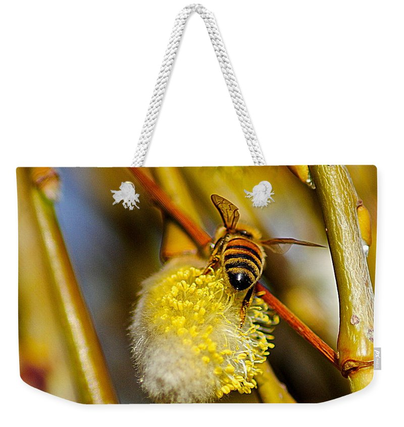 Bee Weekender Tote Bag featuring the photograph Check Out My Beehind by Frozen in Time Fine Art Photography