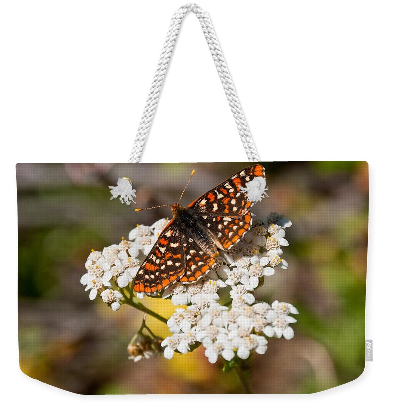 Animal Weekender Tote Bag featuring the photograph Checkerspot Butterfly On A Yarrow Blossom by Jeff Goulden