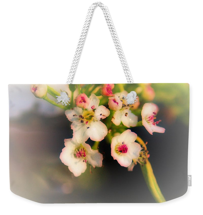 Cherry Blossom Weekender Tote Bag featuring the photograph Cherry Blossom Flowers by Jeremy Hayden