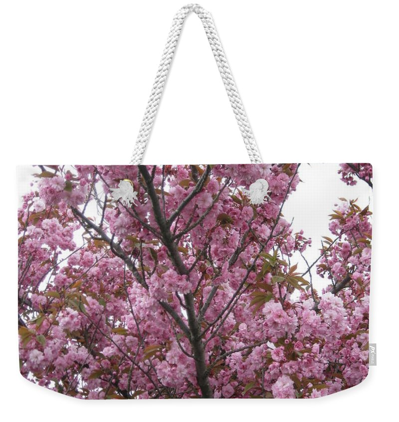 Cherry Blossoms Weekender Tote Bag featuring the photograph Cherry Blossoms 2 by David Trotter