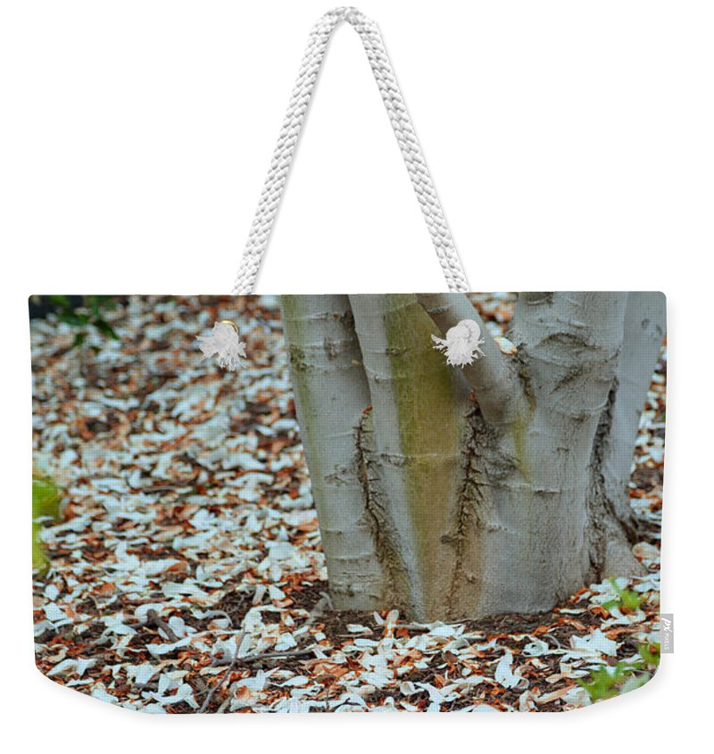 Architectural Weekender Tote Bag featuring the photograph Cherry Blossoms 2013 - 002 by Metro DC Photography