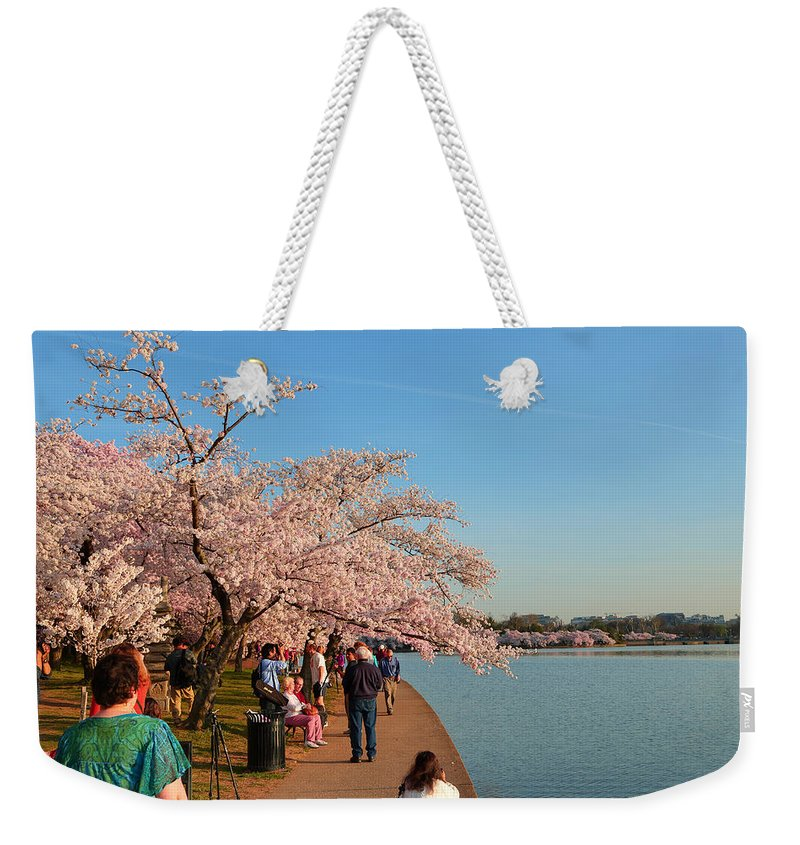 Architectural Weekender Tote Bag featuring the photograph Cherry Blossoms 2013 - 010 by Metro DC Photography
