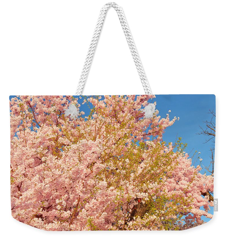 Architectural Weekender Tote Bag featuring the photograph Cherry Blossoms 2013 - 016 by Metro DC Photography