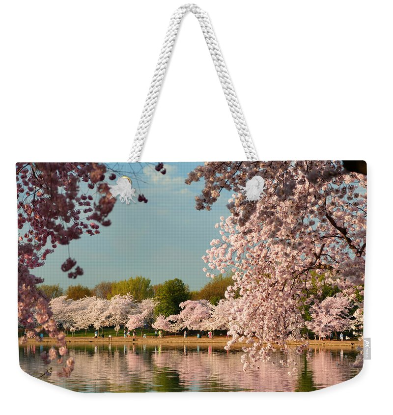 Architectural Weekender Tote Bag featuring the photograph Cherry Blossoms 2013 - 023 by Metro DC Photography