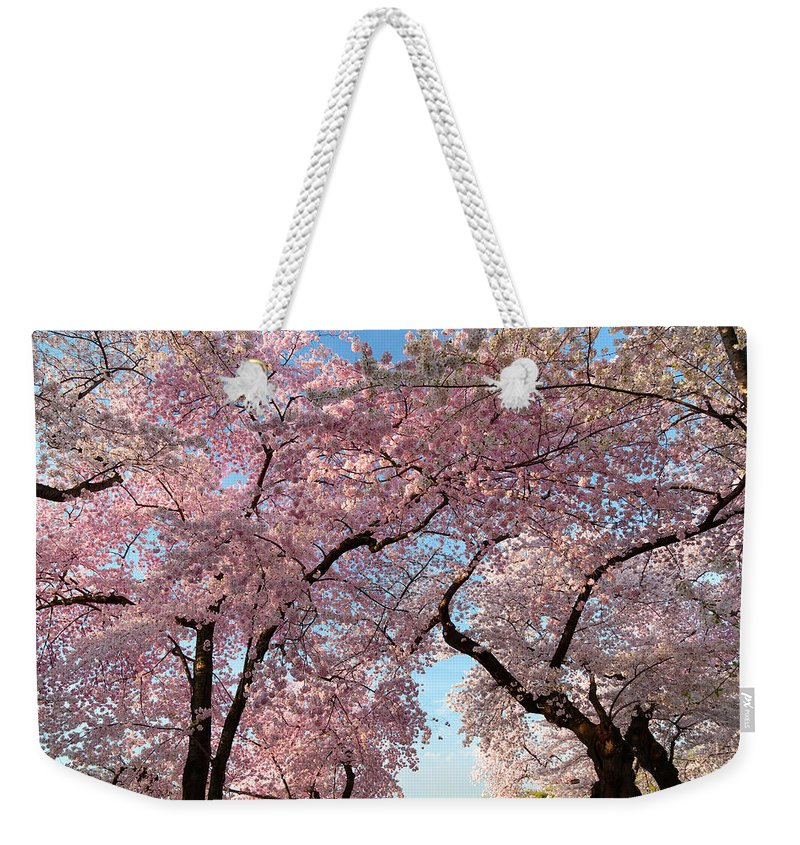 Architectural Weekender Tote Bag featuring the photograph Cherry Blossoms 2013 - 025 by Metro DC Photography