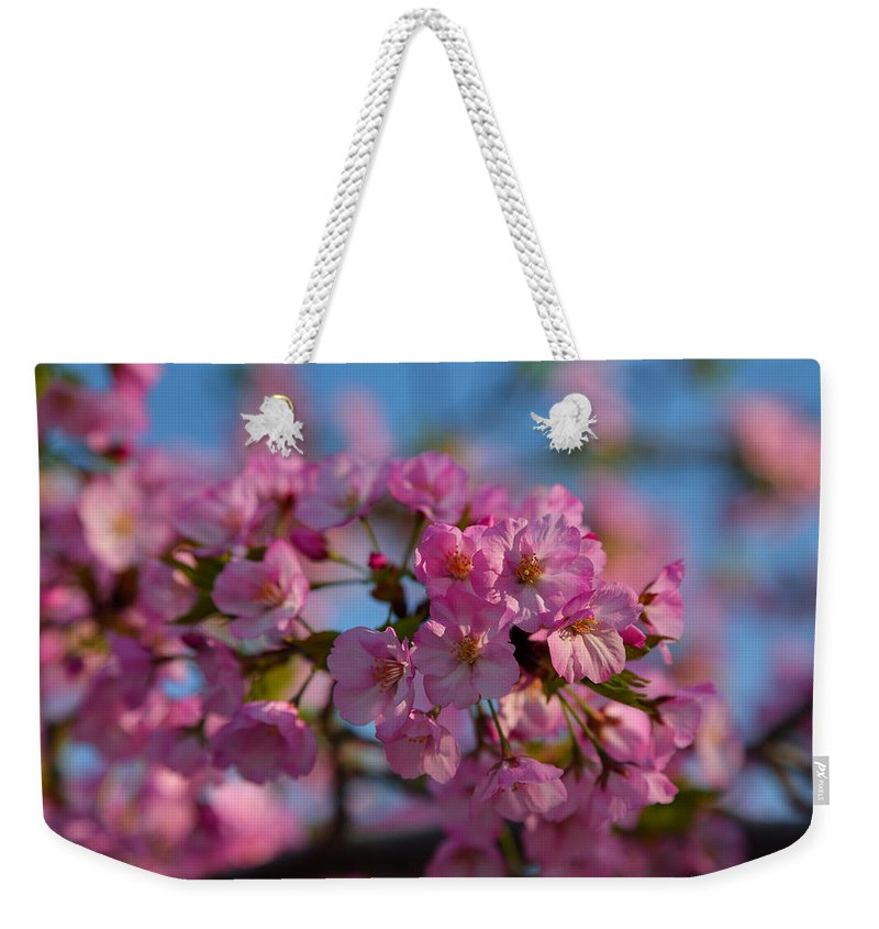 Architectural Weekender Tote Bag featuring the photograph Cherry Blossoms 2013 - 031 by Metro DC Photography