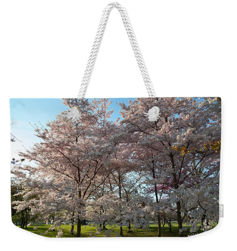 Architectural Weekender Tote Bag featuring the photograph Cherry Blossoms 2013 - 049 by Metro DC Photography