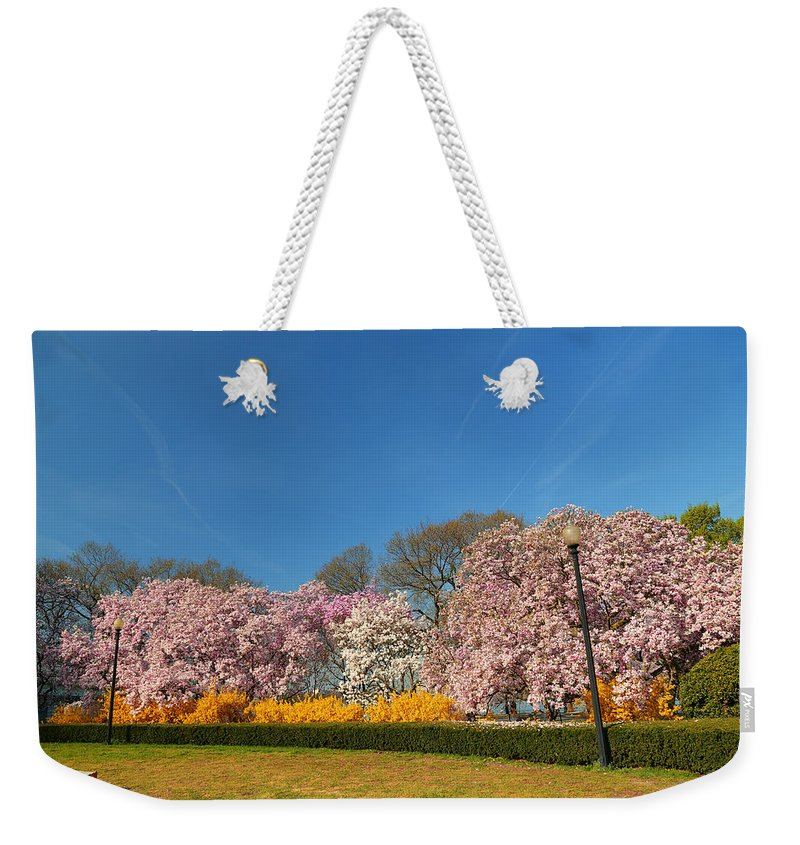 Architectural Weekender Tote Bag featuring the photograph Cherry Blossoms 2013 - 052 by Metro DC Photography