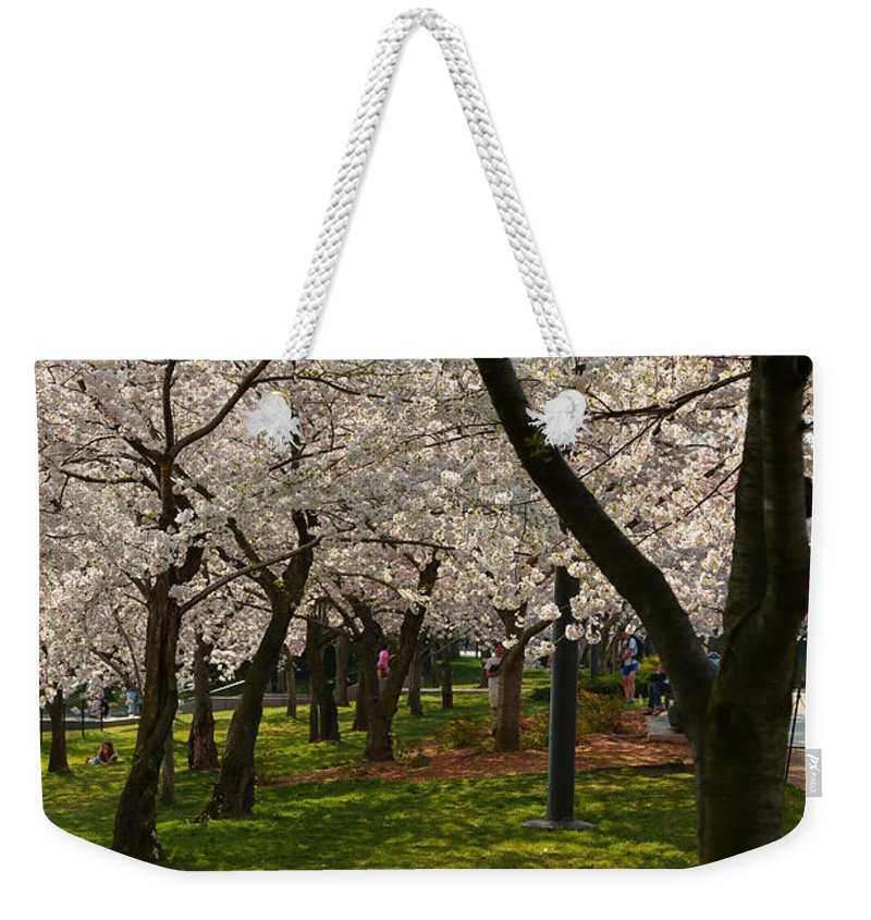 Architectural Weekender Tote Bag featuring the photograph Cherry Blossoms 2013 - 057 by Metro DC Photography