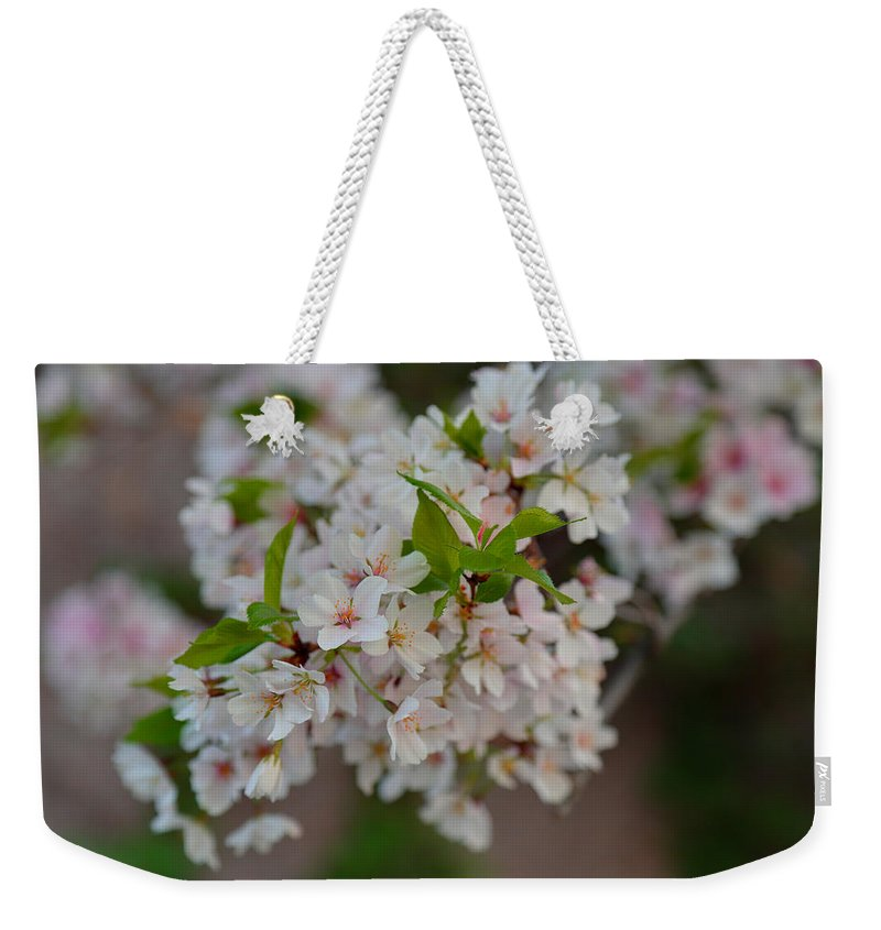 Architectural Weekender Tote Bag featuring the photograph Cherry Blossoms 2013 - 068 by Metro DC Photography